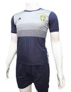 Mẫu quần áo tuyển Thụy Điển Euro 2016 sân khách xanh tím than