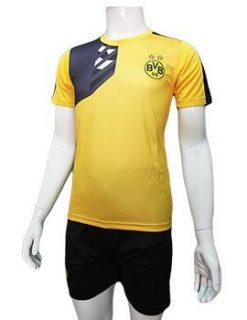 Mẫu quần áo training Dortmund 2016 2017 vàng phối đen
