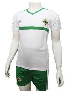 Mẫu quần áo tuyển Bắc Ireland Euro 2016 2017 màu trắng sân khách